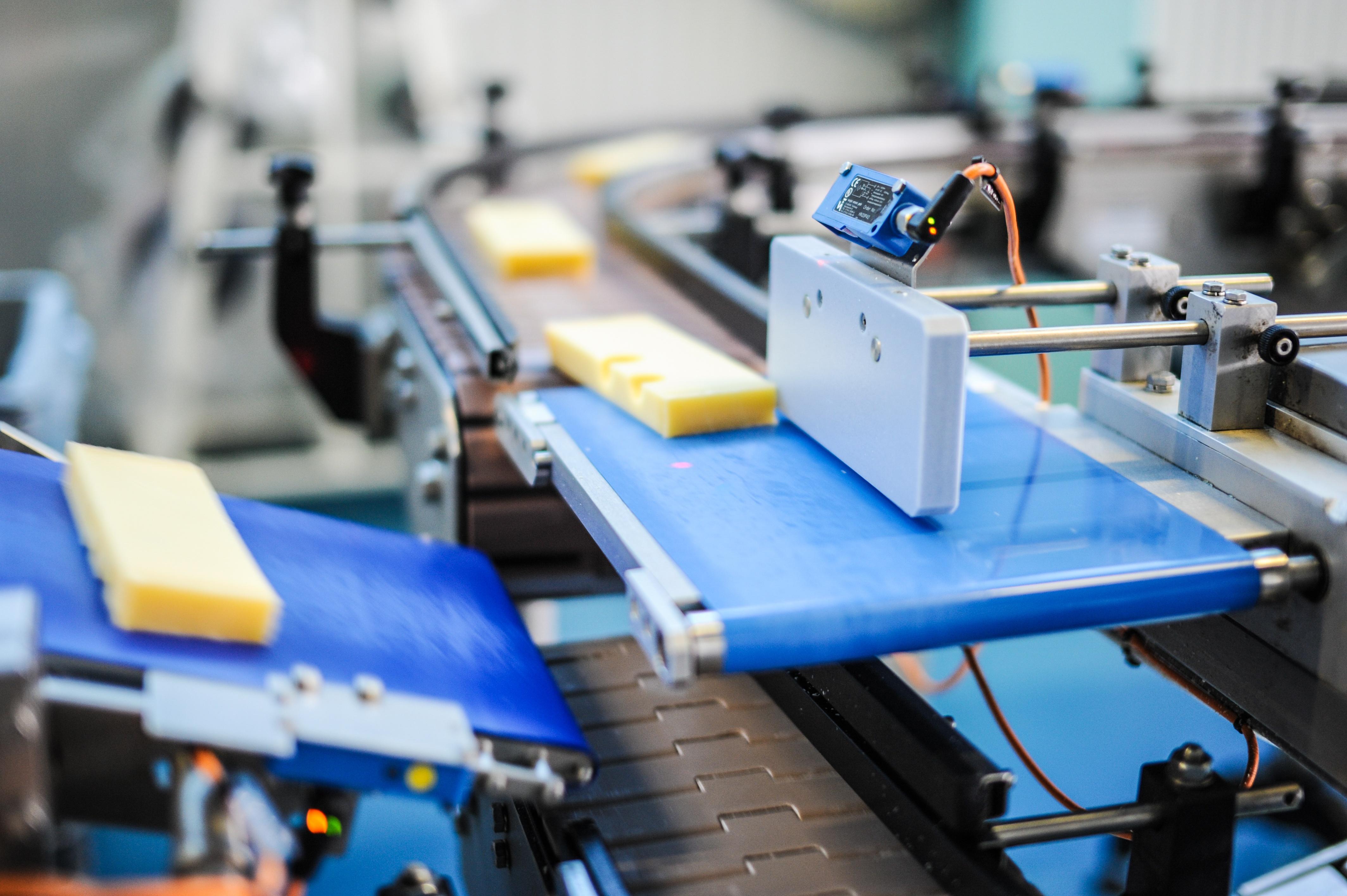 cheese on conveyor belt