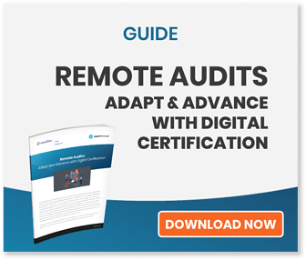 Guide to Remote Audits