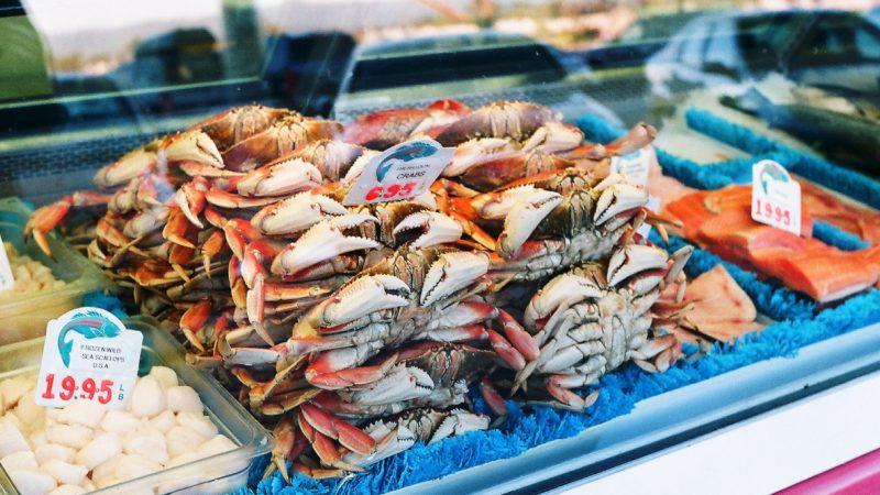 retail seafood case