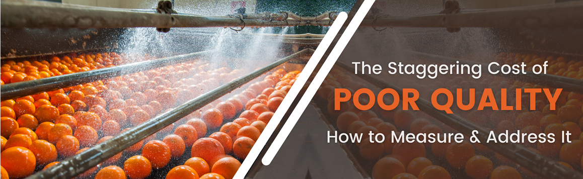 The Staggering Cost of Poor Quality Blog Header