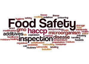 bigstock-Food-Safety-Word-Cloud-Concep-128406509