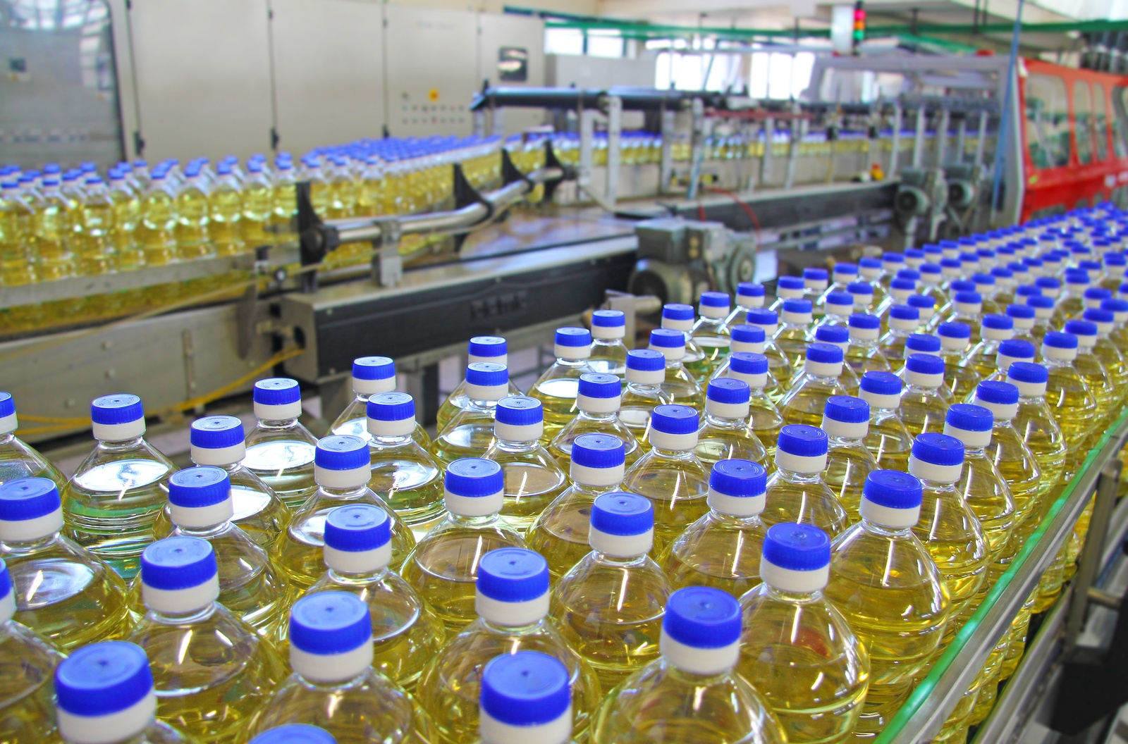 Bottles of oil on production line