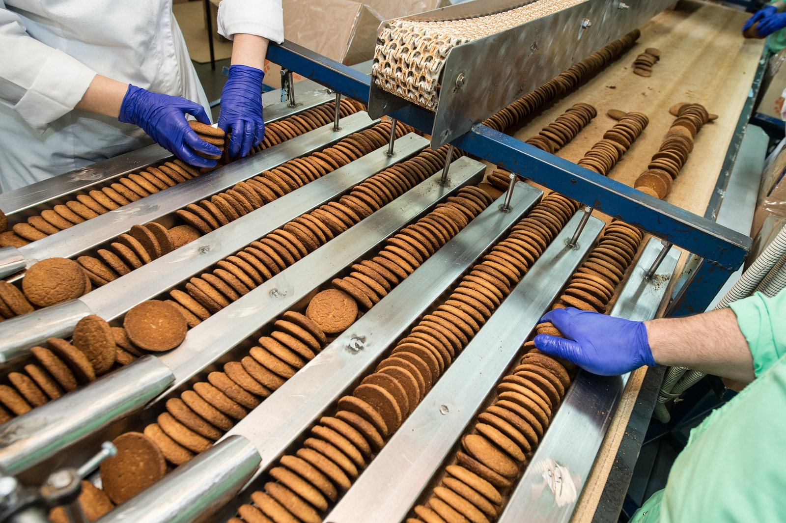 Bigstock  112061560 - Many Sweet Cake Food Factory Massive Production