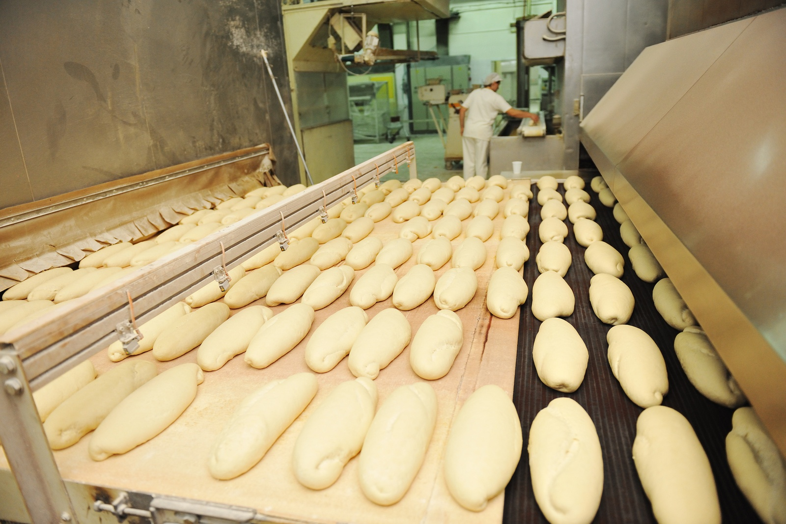 bread factory production line