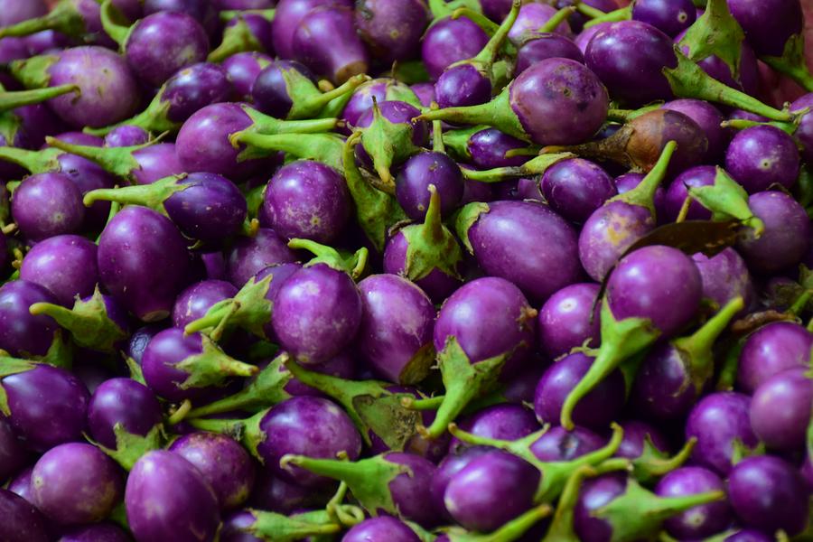eggplants are sometimes bioengineered; the BARI Bt Begun varieties are regulated